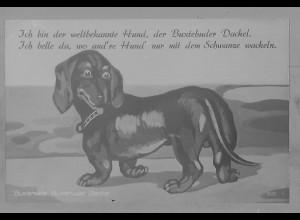 Neg5961/ Buxtehude Dackel altes Negativ 50/60er Jahre