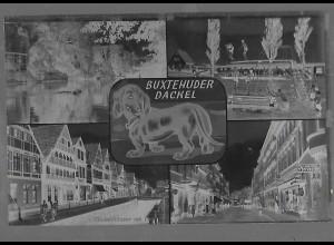 Neg5944/ Buxtehude Dackel altes Negativ 60er Jahre