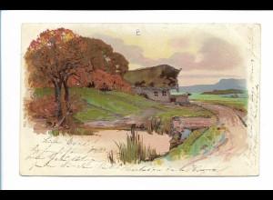 Y19033/ Schöne Landschaft Litho Glimmer Ak 1901