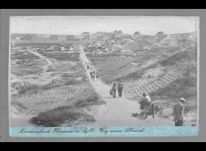 Neg6027/ Hörnum Sylt Weg zum Strand altes Negativ 40/50er Jahre