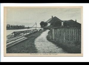 Y19897/ Dorpat Fischerhaus am Embach Tartu Estland AK ca.1930