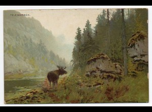 E031/ Telemarken Elch Norwegen Künstler Litho AK Verlag: Eneret ca.1900