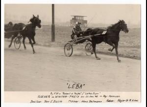 "c949/ Trabrennen Hamburg Farmsen Foto 1946 ""Leba"" Major G.R. Sims"