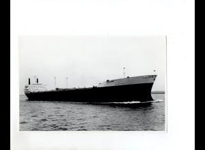 C1490/ Frachter Darina auf hoher See Foto ca. 1965 20,5 x 13,5 cm