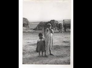 F5803/ Beduinenkinder Marokko Foto ca.1960 24 x 18 cm