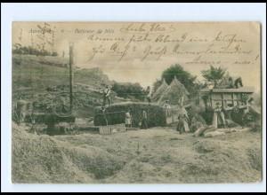 S2991/ Auvergne Batteuse de bles Frankreich Heuernte AK 1904