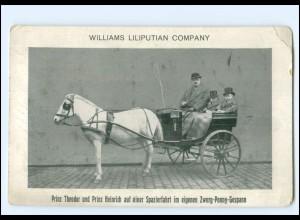 Y20072/ William Liliputian Comp. Prinz Theodor + Heinrich Liliputaner Kutsche AK