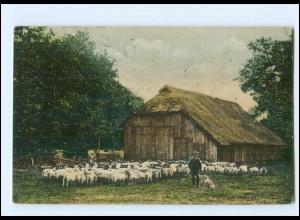Y20631/ Lüneburger Heide Schafstall bei Dedelsdorf AK 1913 Schafhirte