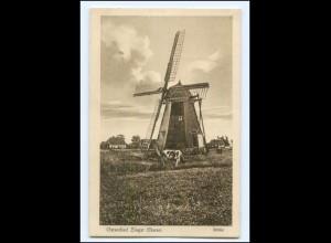 XX15287-183/ Zingst Darss Windwühle AK ca.1925