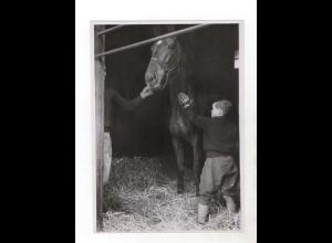 F6028/ Junge striegelt ein Pferd Foto ca.1955 24 x 17,5 cm