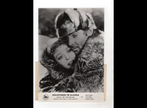 F6015/ Goldfieber in Alaska Clark Gable Loretta Young ca. 1960 24 x 17 cm Foto