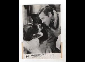 F6014/ Goldfieber in Alaska Clark Gable ca. 1960 24 x 17 cm Foto