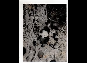 F6601/ Höhlenforscher Robert Deltheil Bergung von Verunglückten Foto ca. 1950
