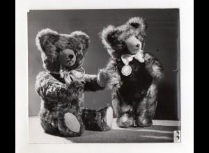 F6406/ Hermann Stofftiere Teddy Foto ca.1955-60 20 x 17,5 cm