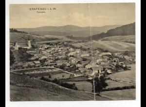 Y1875/ Grafenau i.b. W. Panorama Klapp AK 1907