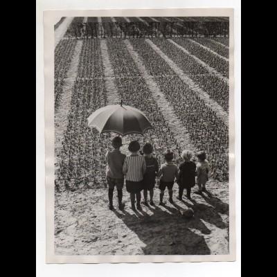 C2045/ Kinder Hillegom Niederlande Foto Pressefoto 1930 24 x 18 cm