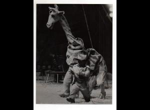 C2203/ Circus Zirkus Heros Clowns Variete Foto ca.1955 24 x 18 cm