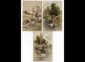 """Y4587/ 3 x Litho AK Meissner & Buch """"Am Weiher"""" 1903/04"""