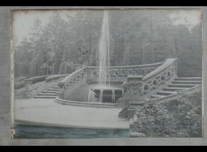 Neg 1745/ Hamburg Ohlsdorf Friedhof Original-Negativ 1940/50