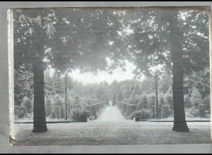 Neg1831/ Hambur Ohlsdorf Friedhof Original-Negativ 1950/60