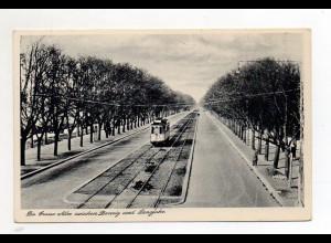 XX00656/ Große Allee zwischen Danzig u. Langfuhr Straßenbahn AK ca.1935