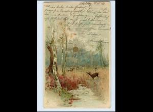 A4458/ Sonnenschein-Postkarte Litho AK 1902
