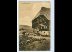 P4A03/ Schwarzwald-Idyll Kunstverlag Paul Hinsche AK 1909