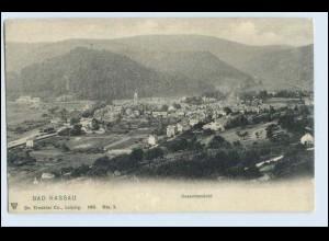 W0K89/ Bad Nassau AK 1905