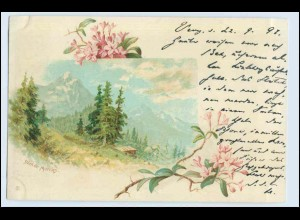 W0S67/ Dent de Morcles schöne Schweiz Litho AK ca. 1898