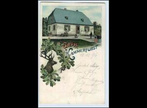 W2U10/ Kammerforst Rüdesheim Gruß aus Kammerforst 1896 Litho AK