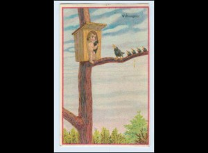W5U44/ Wohnungsnot Amor im Nistkasten Vögel AK 1932