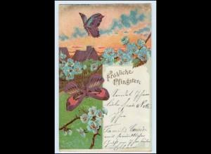 W5W84/ Pfingsten Schmetterlinge 1909 Litho AK