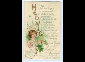 "W5V30/ ""Hedwig"" Namen Litho AK Glimmer 1904"