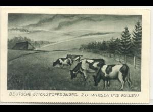 z5240/ Deutsche Stickstoffdünger Reklame AK Kühe