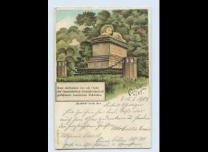 W9G65/ Gruß aus Kassel Denkmal in der Aue Litho AK 1902