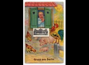 W9E14/ Berlin AK mit Leporello Schweine Hahn Hühner ca.1940