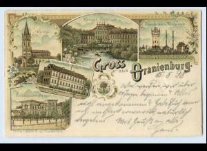 W0C49/ Gruß aus Oranienburg schöne Litho AK 1898